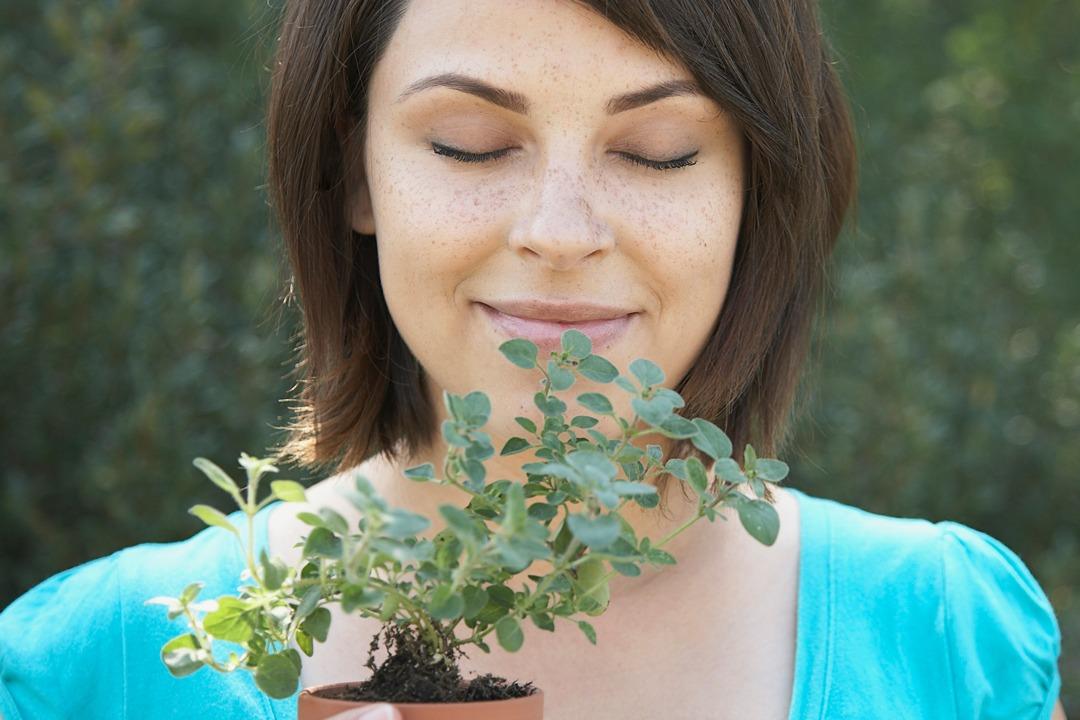 防護大作戰 芳香療法